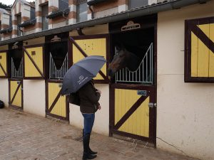 Parapluie - Touring Club de France